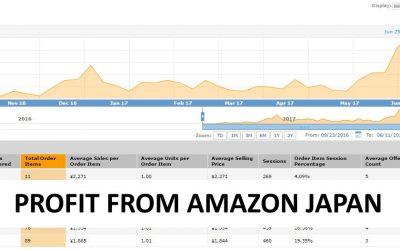 4 Reasons Profits are Higher on Amazon Japan